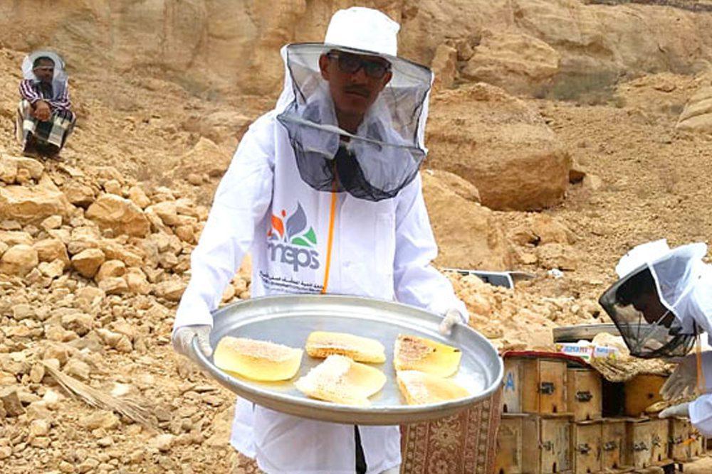 عسل الدوعني الملكي.. جودة العسل اليمني إلى العالم